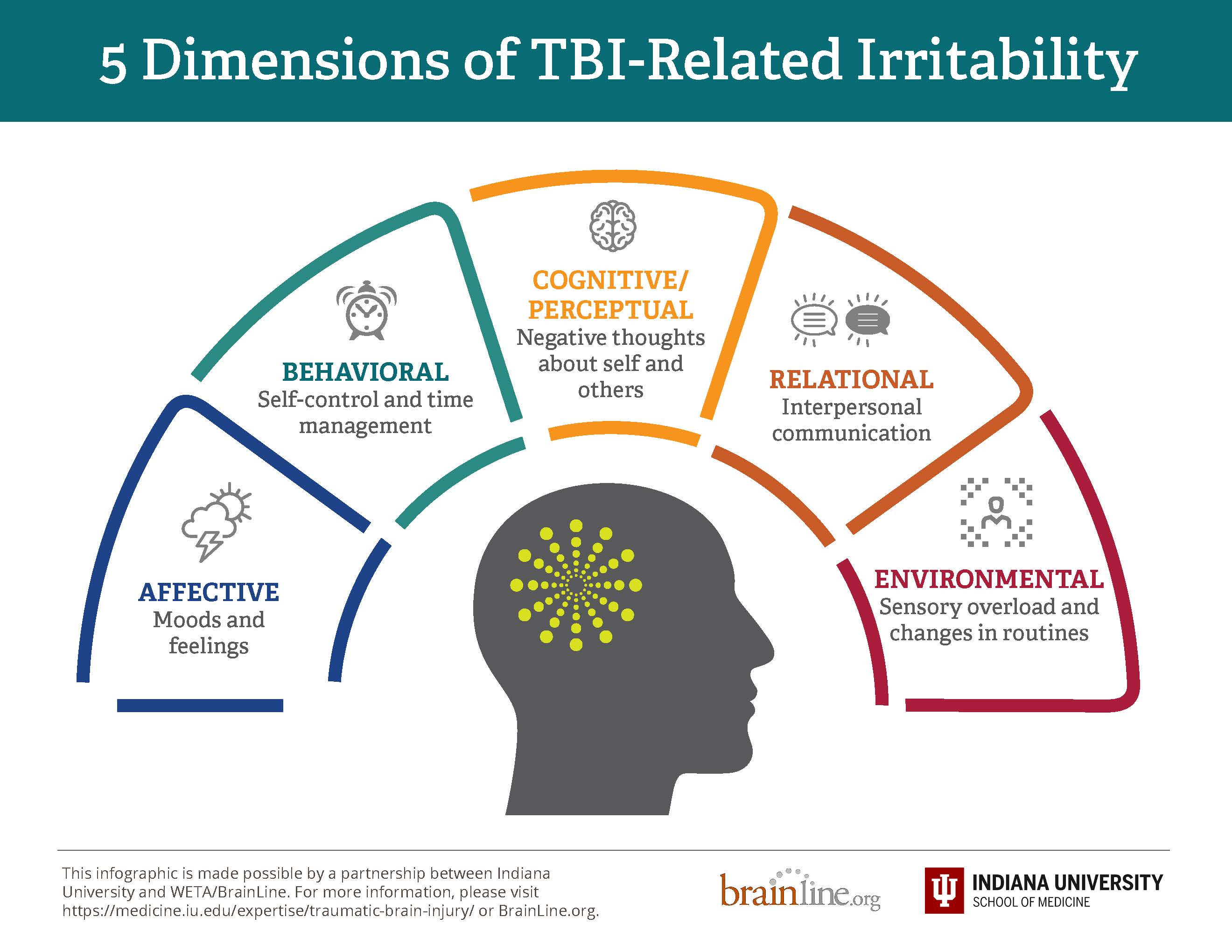 infographic on five dimensions of irritability page 1
