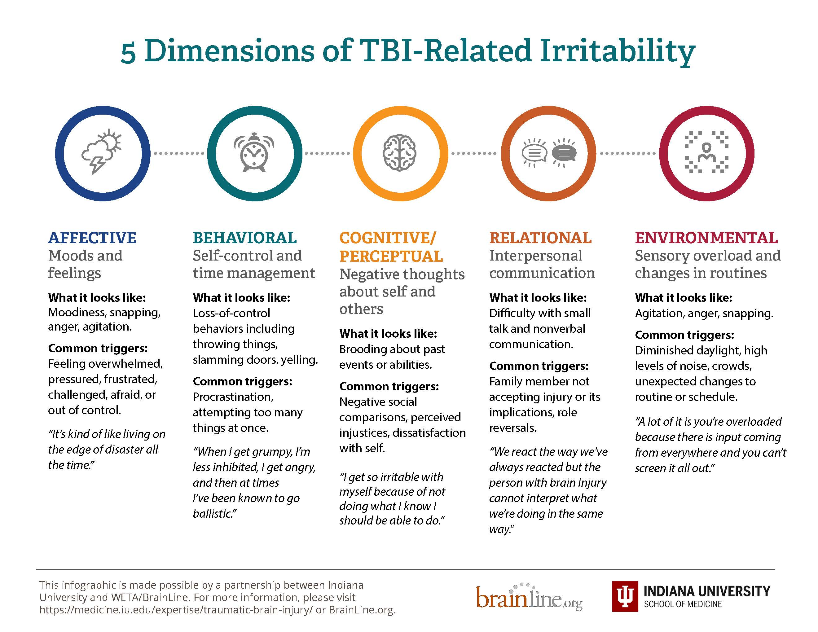 infographic on five dimensions of irritability page 2