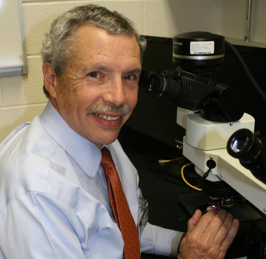 Dr. Daniel P. Pearl