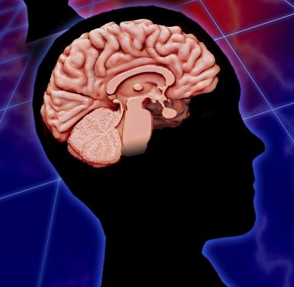 How Does TBI Affect the Brain? | BrainLine
