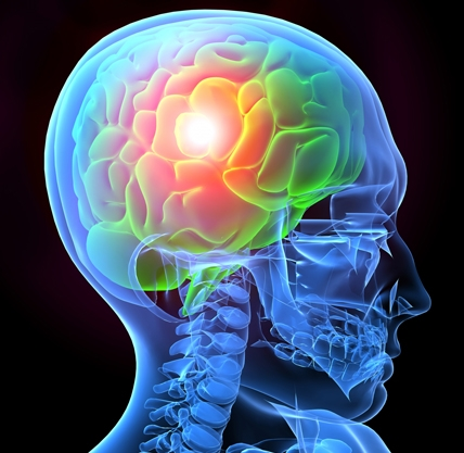 An Introduction to Brain Injury