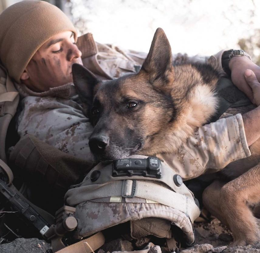 Marine Corps Cpl. Carlos Deleonsantiago rests with his military working dog, Fero, at Marine Corps Air Ground Combat Center Twentynine Palms, Calif., Feb. 16, 2020. DoD Photo by USMC Lance Cpl. Cedar Barnes