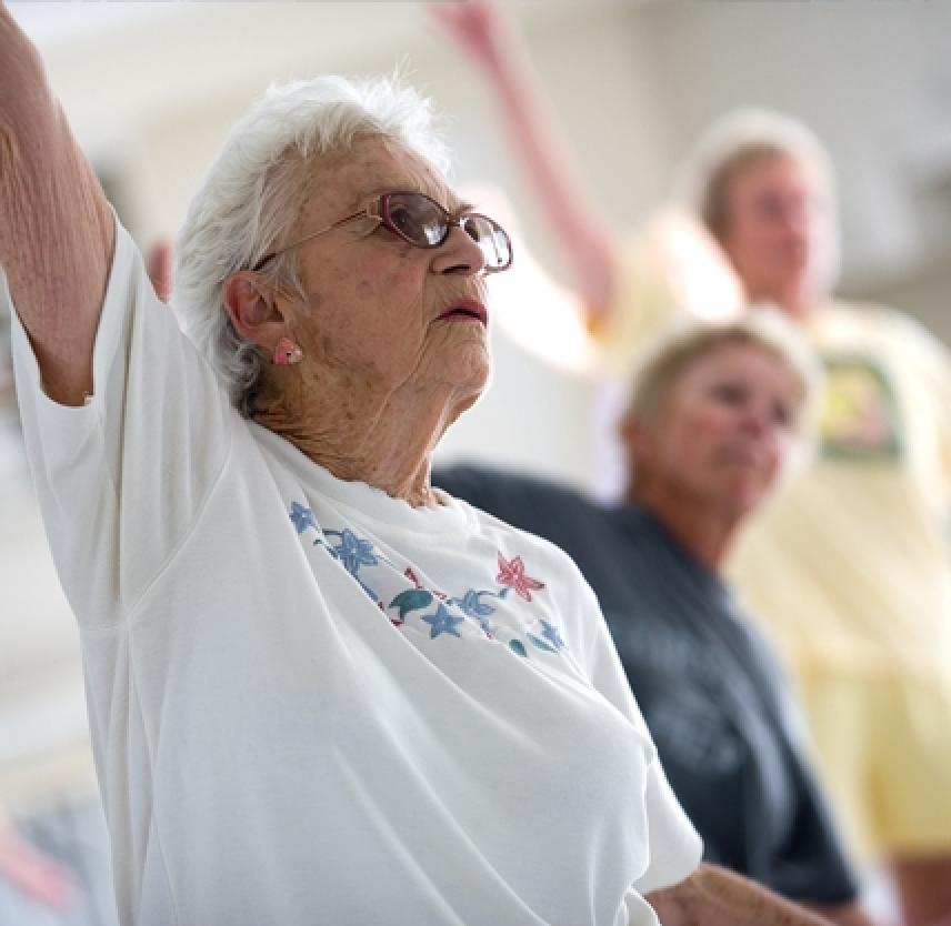 Preventing Traumatic Brain Injury in Older Adults