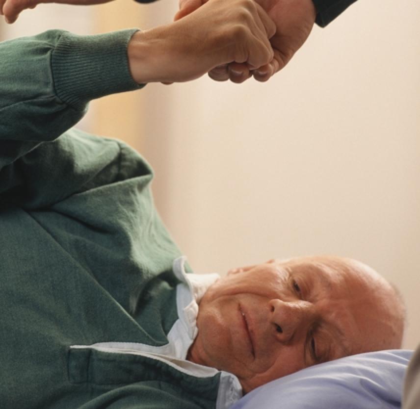 An Introduction to Rehabilitation: The Healing Brain
