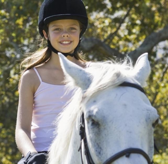 Equestrian Safety