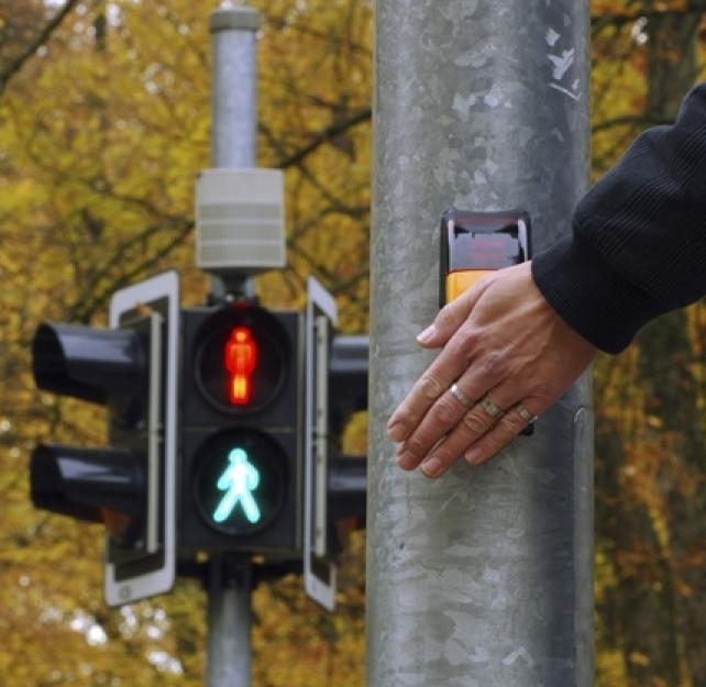 Dr. Gillian Hotz: Common Pedestrian Injury Age Groups