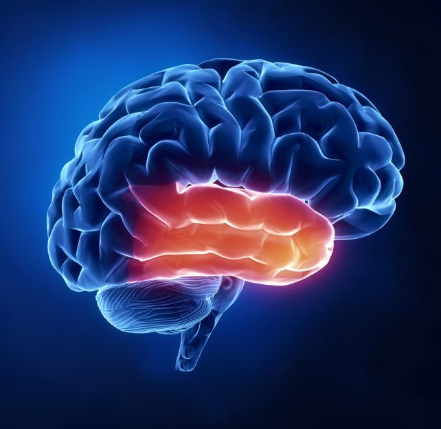 Why is it So Difficult to Commit Information to Memory Following a Brain Injury?